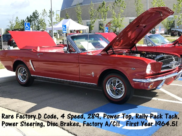 1964 Ford Mustang Convertible - SOLD!!